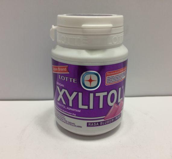 Xylitol Gum Bottle Blueberry Mint 58g (40p)